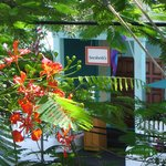 Photo de Sarabeth's Key West