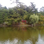 Nara Park