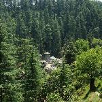  Jageshwar fro Trek
