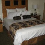 Foto de BEST WESTERN PLUS Carlyle Inn