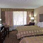 Φωτογραφία: Quality Inn & Suites-Capital District