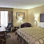 Quality Inn & Suites-Capital District Foto