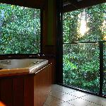  Coolara - ensuite showing spa and sliding wall to forest