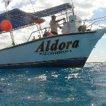  Aldora Divers; Best on the island
