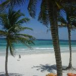 Photo de Ocho Tulum