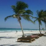 Photo of Ocho Tulum