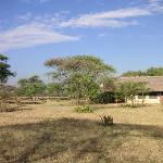 Serengeti Tented Camp - Ikoma Bush Camp Foto