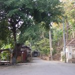 entrance to banjar springs at 6am-a nice walk under shady cherry trees