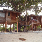 Photo de Laiya Coco Grove Resort