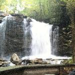 Middle Falls (45 ft)