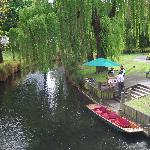 Punting on th Avon River in Christchurch