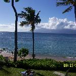 view in front of lanai
