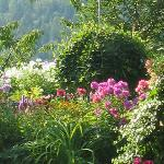 Foto de Garden View Cottage Bed & Breakfast