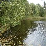 Zaborec, the little lake