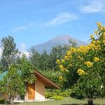 Foto de Meru View Lodge