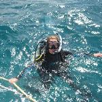 First time diving!!