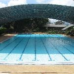  the olympic-size swimming pool at Horison