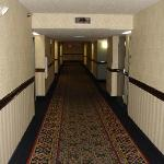 Holiday Inn Express Hotel & Suites Jacksonville South resmi
