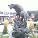 Sculpture accross street - Mountain Lion