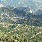 View from the top of the Dentelles