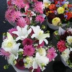 Beautiful boquets for sale at the OC Farmers Market.