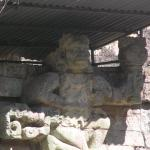 Photo of Site Museum Ruines de Copan