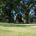 Flagstaff Gardens