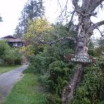 Foto de Tsunami Backpackers Guesthouse - Port Alberni