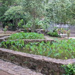 Kepaniwai Heritage Gardens