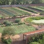 Kitchen Garden at Doddington