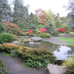 Washington Park Arboretum