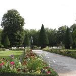 Manicured trees in the garden.