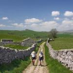 Walking Breaks in Wensleydale