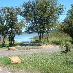 Lake Mineral Wells State Park Campground照片