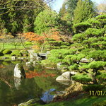 Japanese Tea Garden