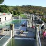 National Seal Sanctuary