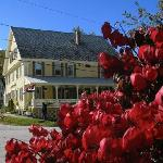 Photo of Jamaica House Bed & Breakfast