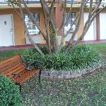 Photo de Motel 6 Atlanta - Northeast #4687