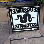 Photo of American International Rattlesnake Museum