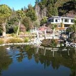 Kahurangi Brown Trout B&amp;B