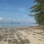  plage de phang nga bay
