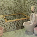 Toilet with Bath Tub