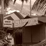 Mr. X's Shiggidy Shack Beach Bar