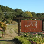 Mauritson Wines