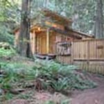 Deep Forest Cabins at Mt. Rainier