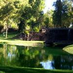 Photo of Resort Real del Bosque