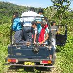 Jungle saffari to National Park