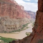 Colorado River & Trail Expeditions - Day Trips