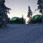 Golden Crown Levin Iglut (Levi Igloos) Foto