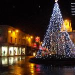  High Street with xmas tree